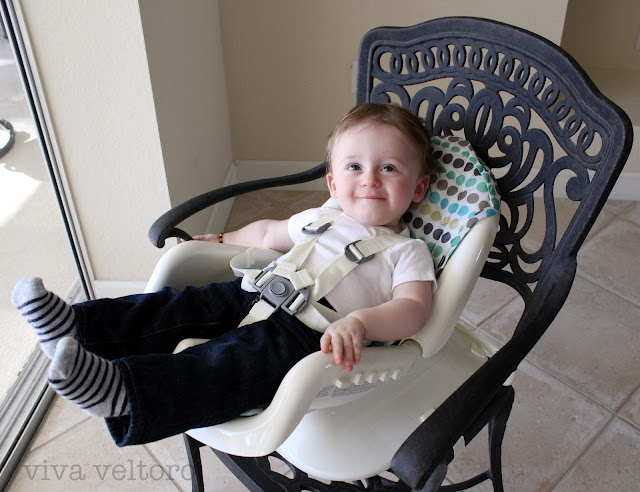 The First Years Deluxe Reclining Feeding Seat  sc 1 st  Viva Veltoro & The First Years Deluxe Reclining Feeding Seat Review! - Viva Veltoro islam-shia.org