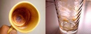 manfaat propolis, khasiat propolis, propolis brazilian, propolis nano, propolis, kegunaan propolis, harga propolis, jual propolis, efek samping propolis, propolis terbaik