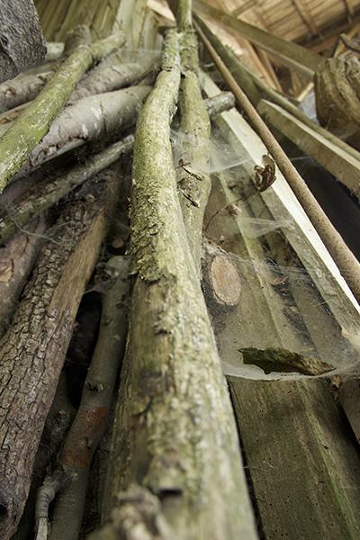 Photo de bois prise à la ferme d'Andrée