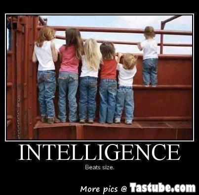 Intelligence beats size