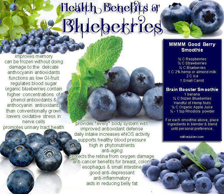 benefits blueberries