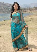 Nikitha, In, A, Designer, Saree