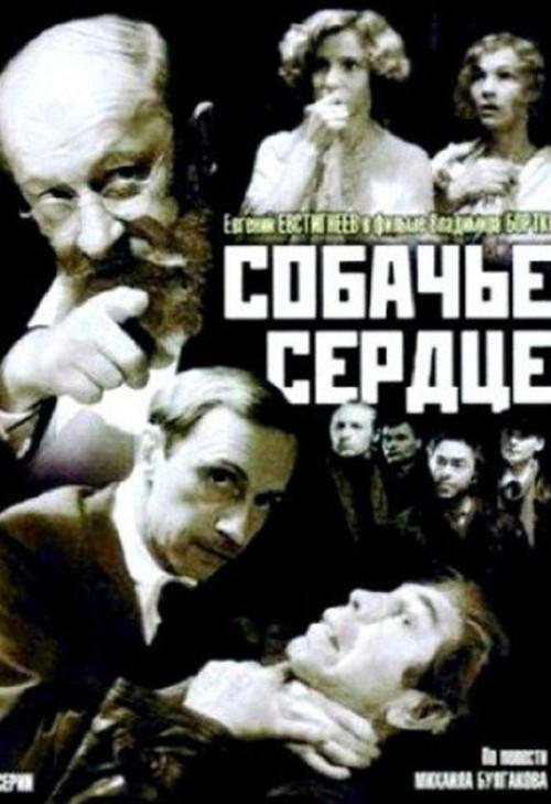Literatura rusa al cine