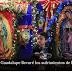 Homilía del Papa Francisco en la Santa Misa de Nuestra Señora de Guadalupe