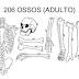 Quais são os 5 tipos de ossos?