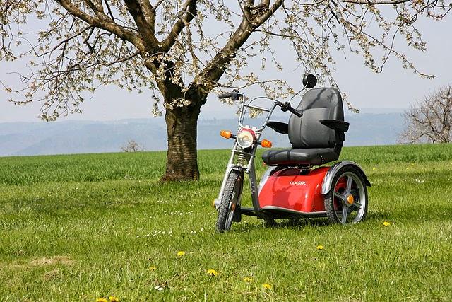 Elektromobil bei Ausflug