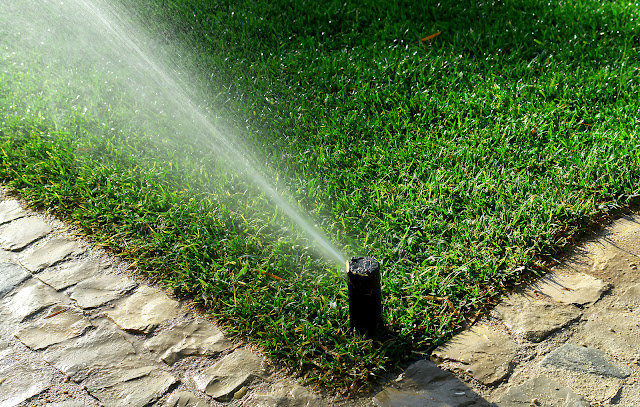 Advanced Gardening Products For Your Home Garden Garden Watering Devices