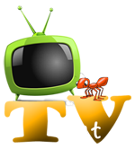 TV ant