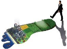 Calcula la teua petjada ecològica