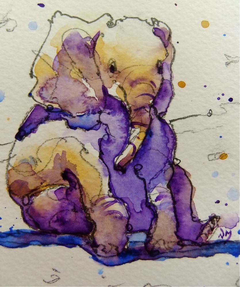 Line Drawing With Watercolor : Nora macphail artist baby elephant cards