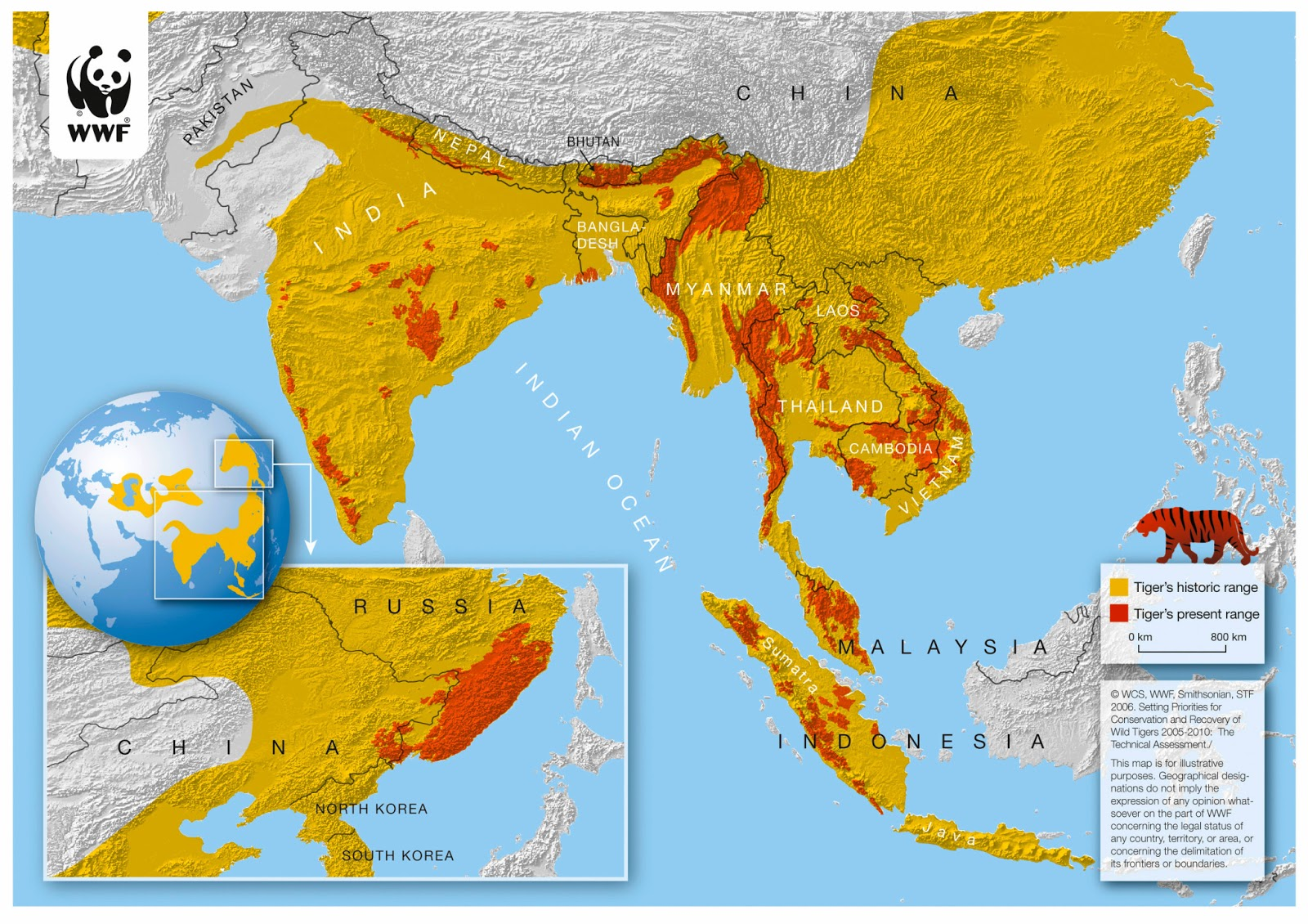 Final day of big cat week day 6 science in the city this map just highlights how increasingly vulnerable the tiger population is and how much we need to help gumiabroncs Image collections