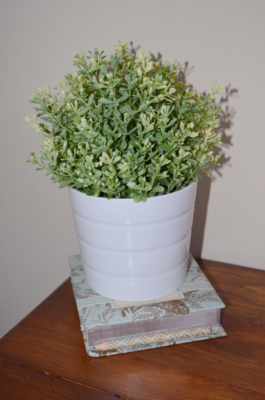 ikea vase and plant