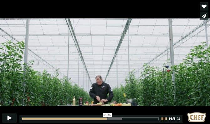 Westlandpeppers in de Hoofdrol in het online magazine IAMCHEF van Nestlé