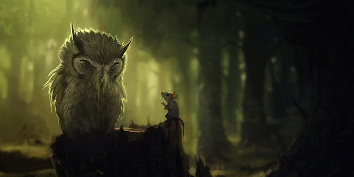Owl 300+ Muhteşem HD Twitter Kapak Fotoğrafları