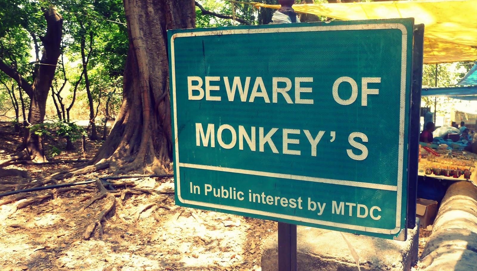Beware of monkeys