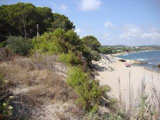 Platja de Santa Llucia beach landscape