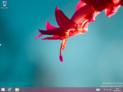 Windows 8.1 Preview Build 9431 free download-fancytricks.com