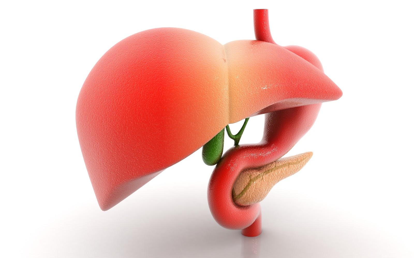 diet for gallbladder dyskinesia