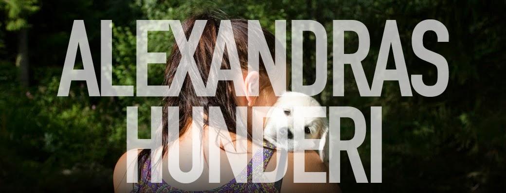 Alexandras hunderi