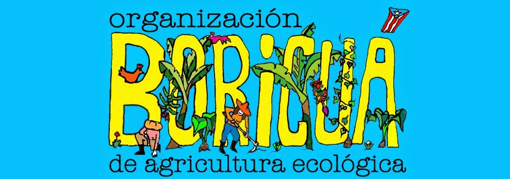 Organización Boricuá de Agricultura Ecologica