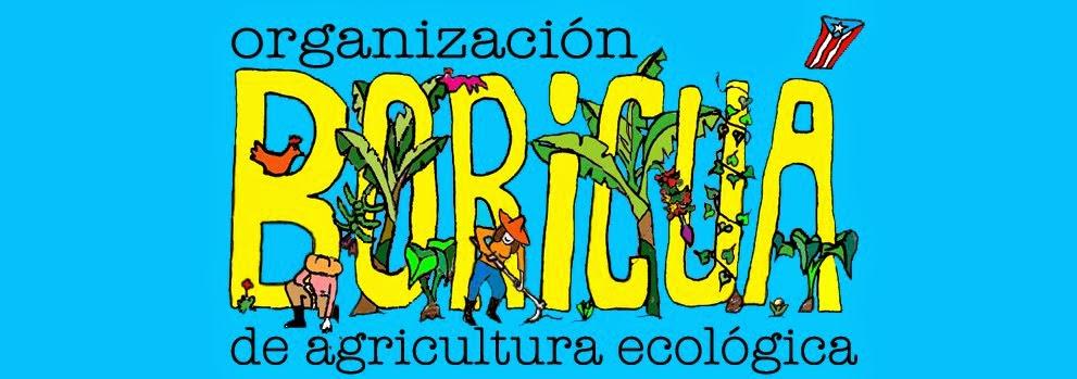 Organización Boricuá de Agricultura Ecologica