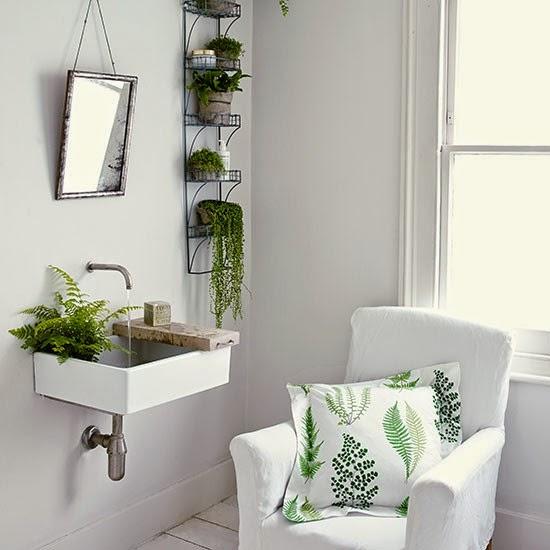 Ro liny w azience decomanka - Piante per bagno ...