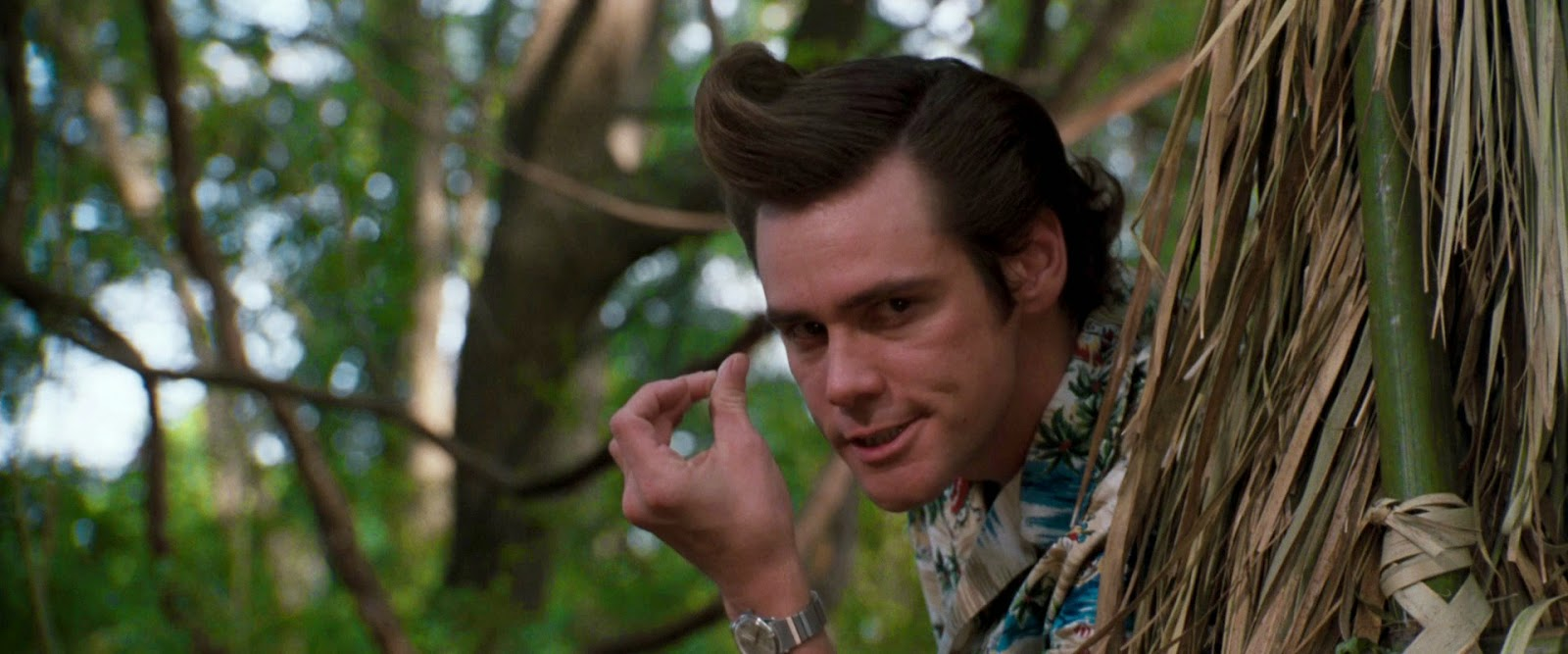 ace ventura when nature calls 1995
