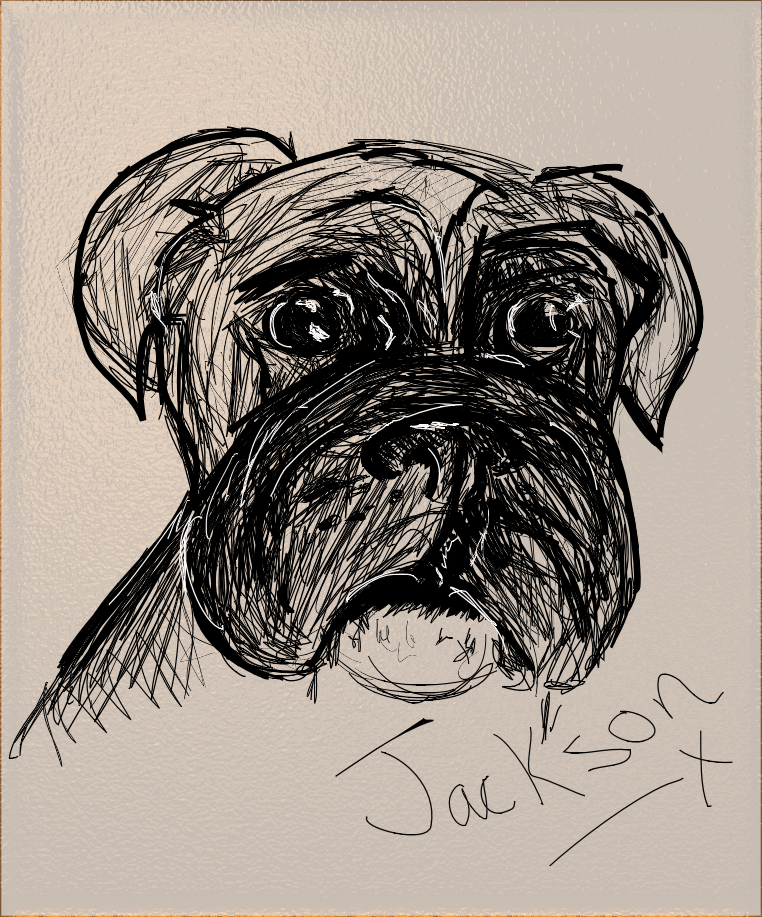 boxer dog computer hand drawing