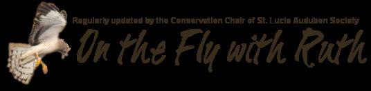St. Lucie Audubon Society