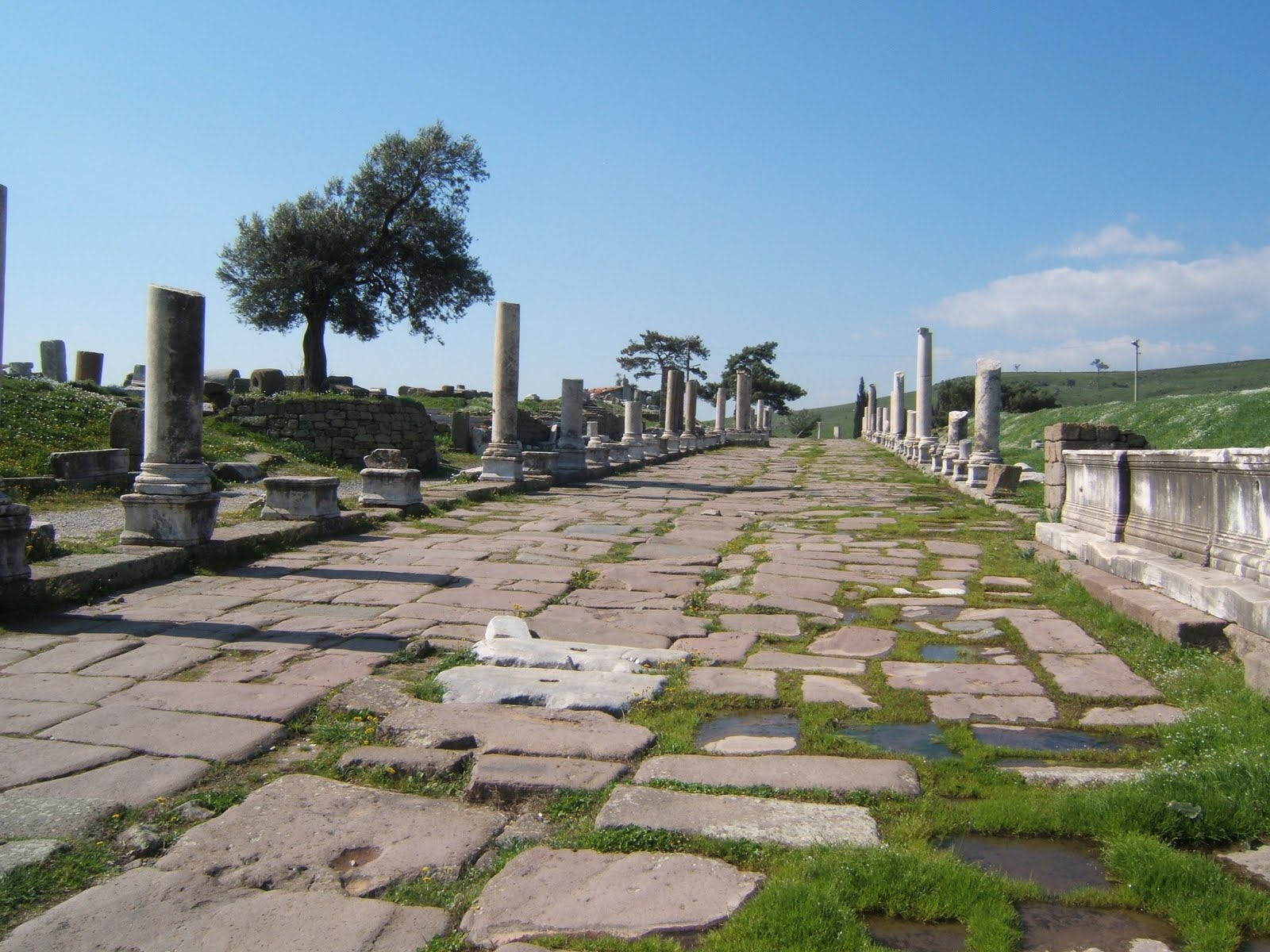 Colonnade to Asklepion, Pergamon Turkey