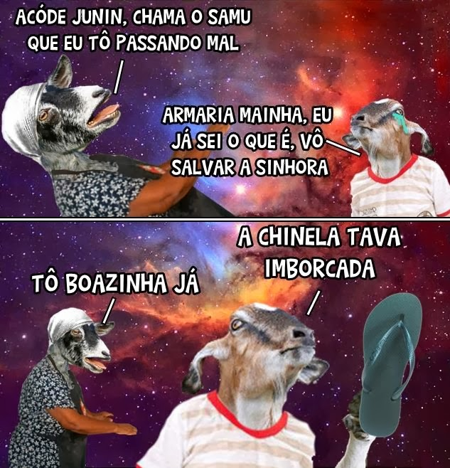 Imagens irónicas   Mil-Frases