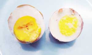 Telur tiruan