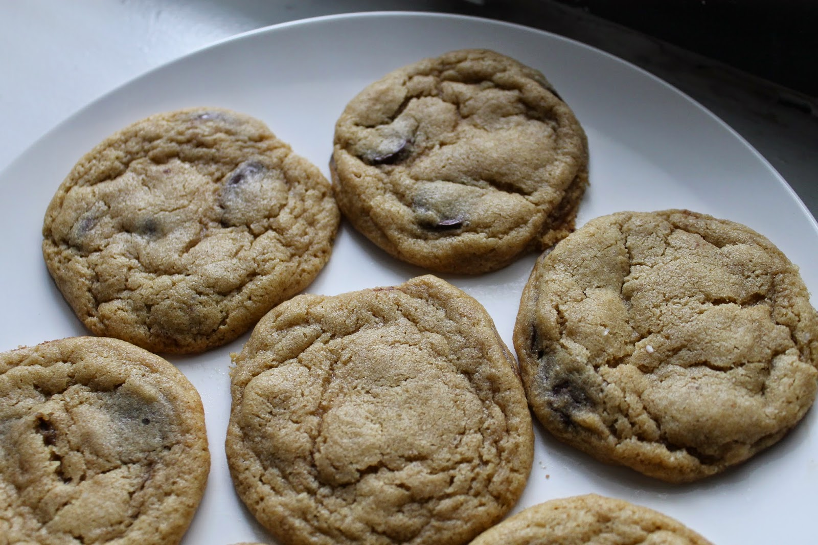 Absolutely The Best Chocolate Chip Cookies Recipes — Dishmaps