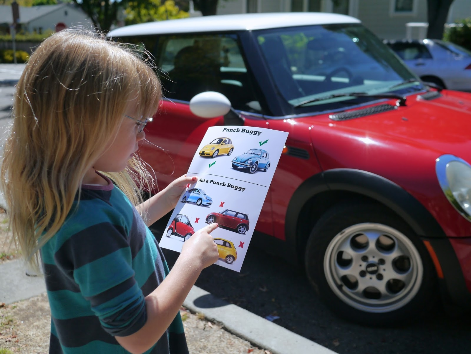 Little Hiccups: Punch Buggy Field Guide