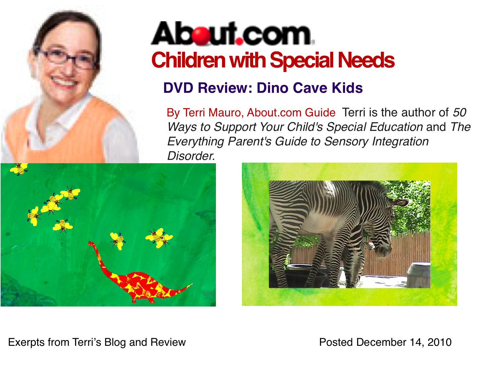 50 ways to support your child s special education mauro terri