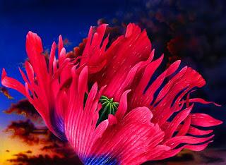 Cuadros Flores Grandes Oleo