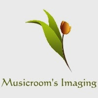Musicroom's Imaging