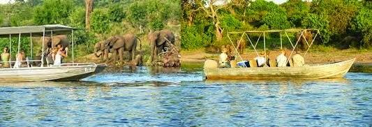 croisiere sur le fleuve zambeze au Botswana