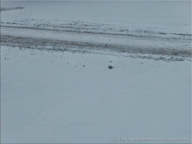 snowstorm January 2014