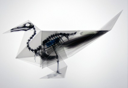 Mitsubishi Chemical Junior Designer Award Takayuki Hori 4 425x293 What Happens If There Origami Paper Inside Bones Beast?