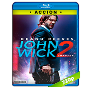 John Wick 2: Un nuevo día para matar (2017) BRRip 720p Audio Dual Latino-Ingles