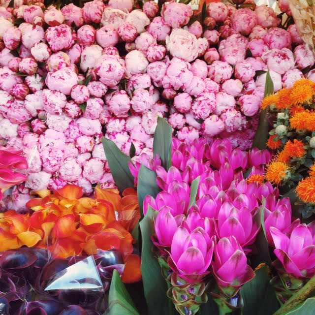 Peonies at the Columbia Road Flower Market