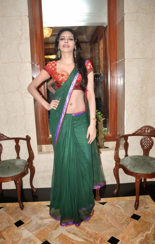 Sherlyn Chopra playboy magazine model latest hot pics in green saree navel show transparent saree