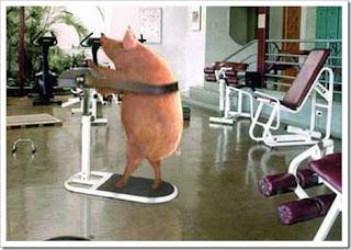 Porco sem gordura