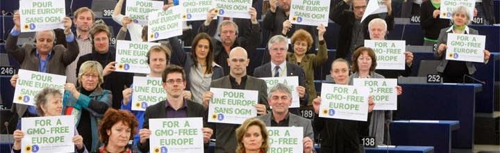 Μεταλλαγμένα: Η επόμενη μάχη στο ευρωκοινοβούλιο
