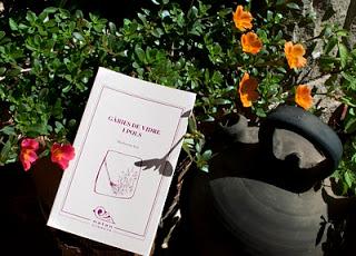 El meu primer llibre: Gàbies de vidre i pols