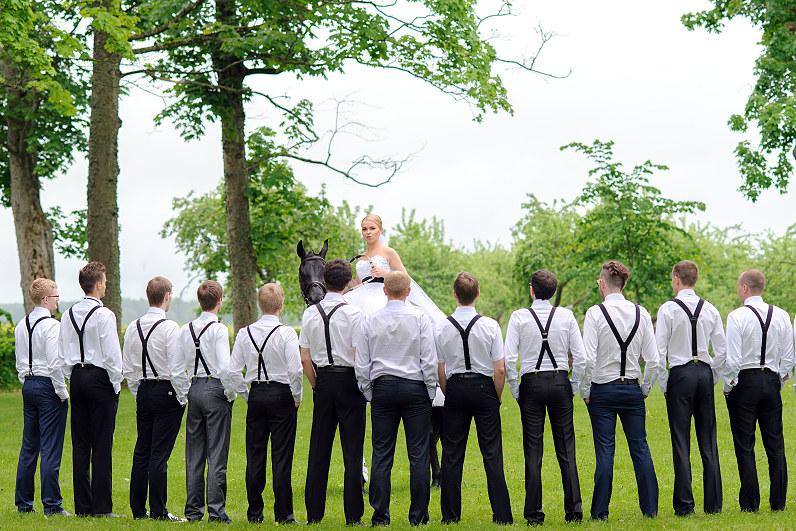 žirgai per vestuvių fotosesiją