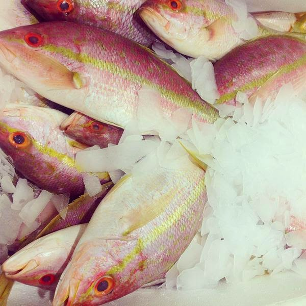 Billingsgate Market fish