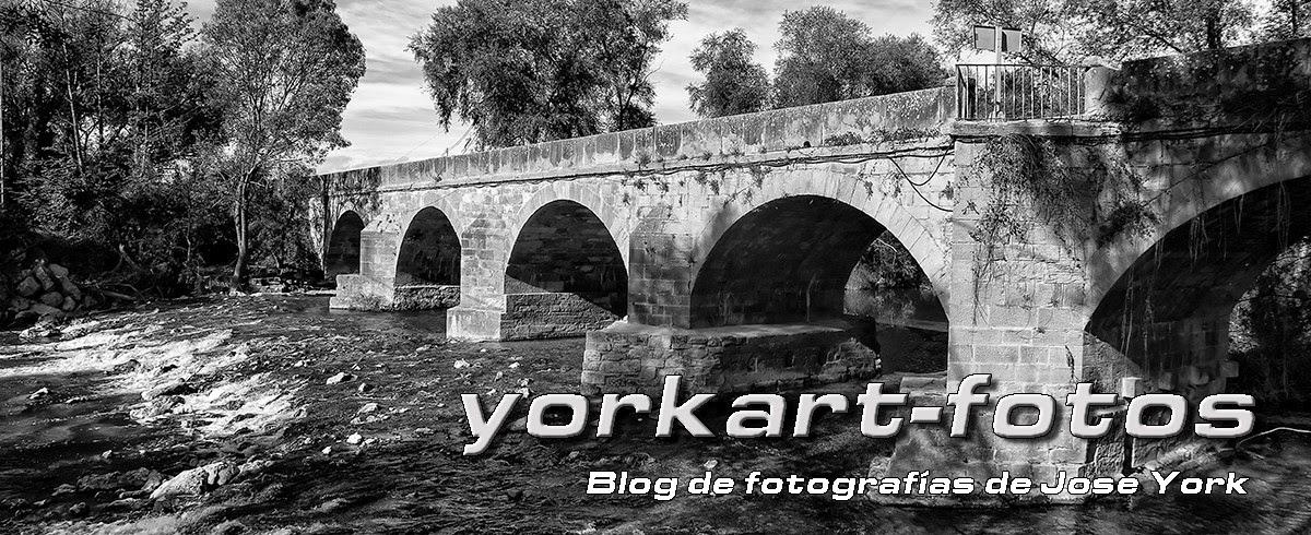 yorkart-fotos