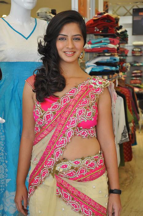 South New Desi Actress Nisha Shah Latest Cute Saree Photos wallpapers